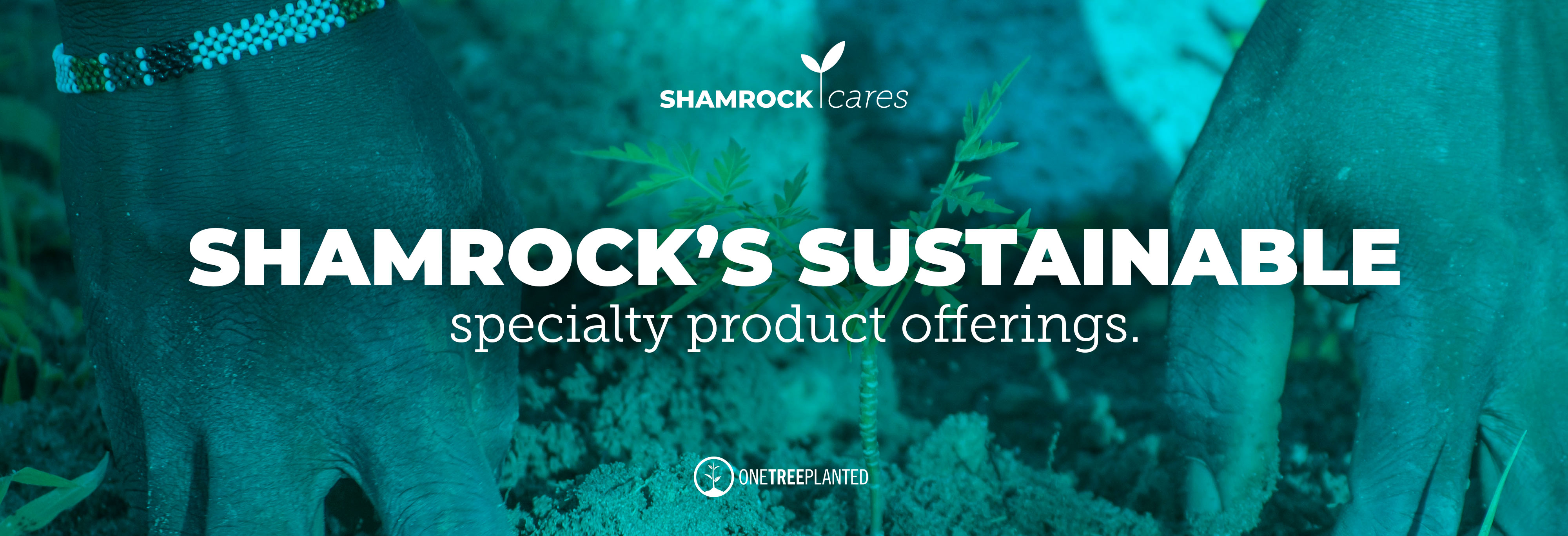 Shamrock Cares 1